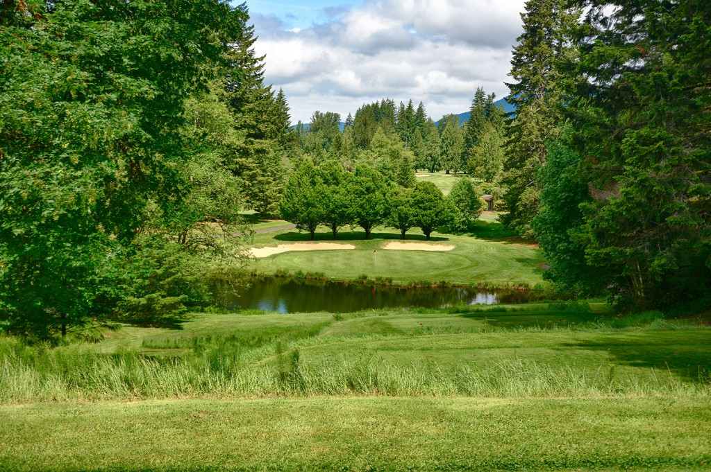 Pinecone Hole 4 - The Resort at the Mountain