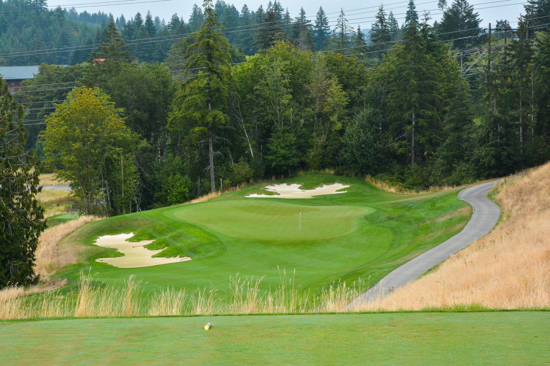 The downhill par 3, 3rd. This can stretch out to over 280 yards.